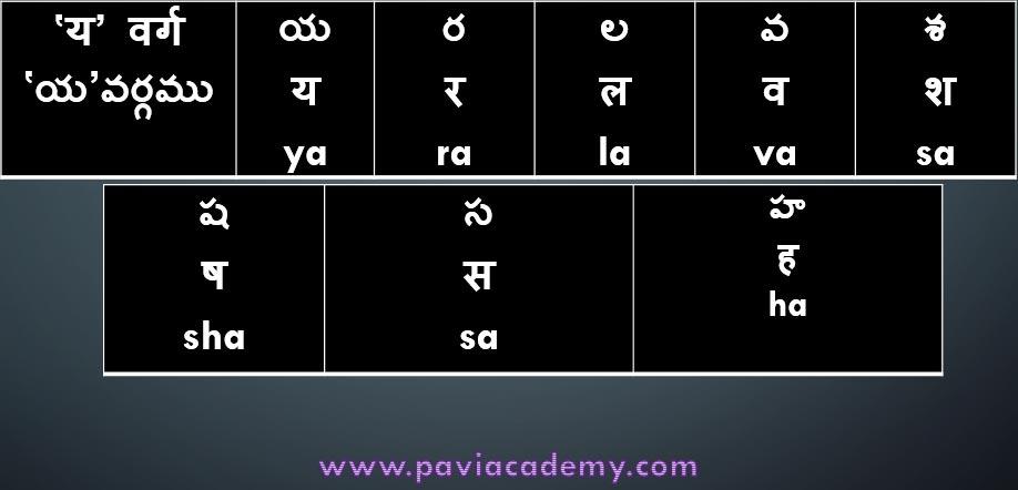 www.Pavi Academy.com