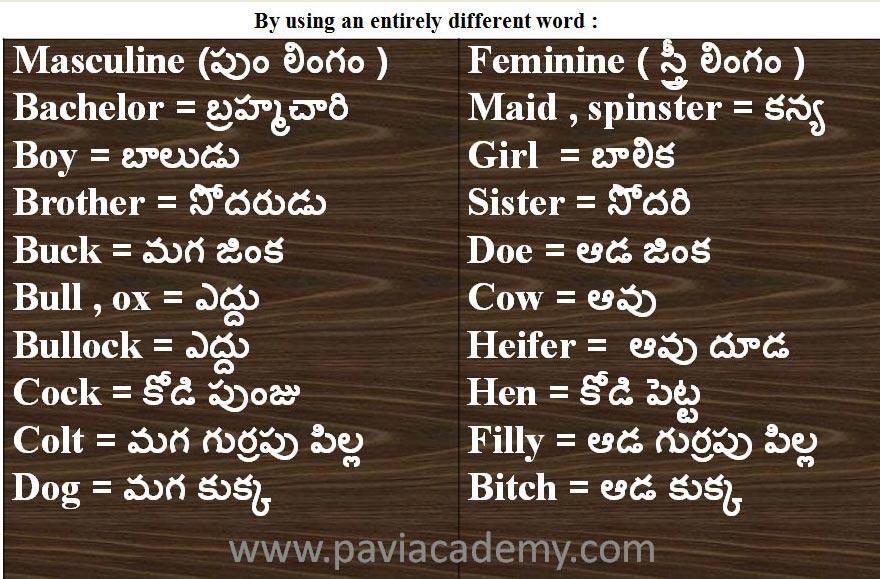 Kinds of Gender in English Grammar : 1 . Masculine Gender ( పుం లింగము )2 . Feminine Gender ( స్త్రీ లింగము )3 . Common Gender ( ఉభయ లింగము )4 . Neuter Gender-paviacademy